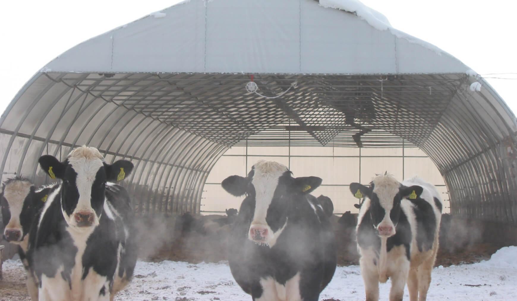 畜舎・堆肥場用ドームの特徴 イメージ 01