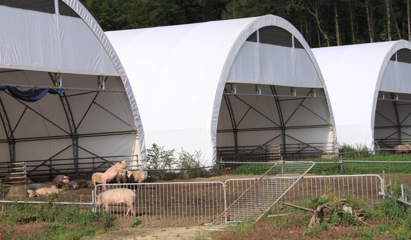 畜舎・堆肥場用ドームの特徴 イメージ 03