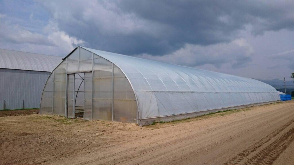 農業用ハウス_タスコグリーンハウス
